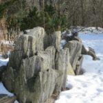 Dekoracja ogrodu po sezonie zimowym